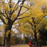 広尾の遊び場 有栖川公園と麻布こども中高生プラザのセット利用がおすすめ