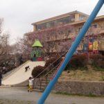 諏訪湖湖畔にあるみずべ公園は子ども連れの花見や観光に最適