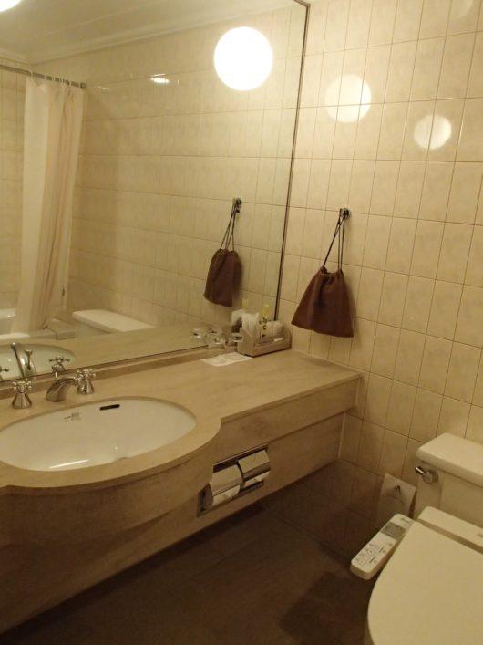 琵琶湖ホテル スーペリアルーム 水周り