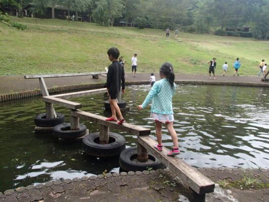 蓬山ログビレッジ 水上アスレチックの遊具(水上渡り橋)
