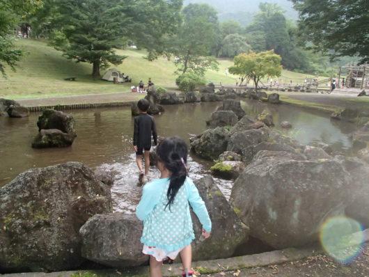 蓬山ログビレッジ 浅い池
